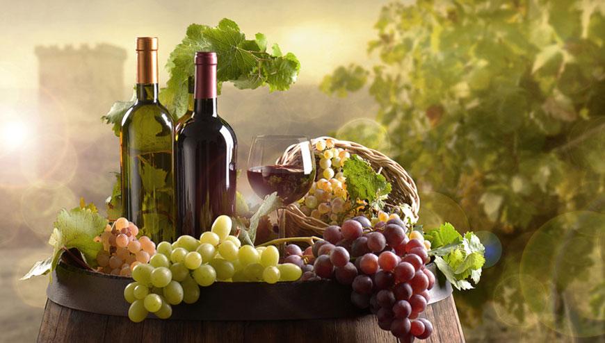 Weinratgeber: Alles Wissenswerte über Weine