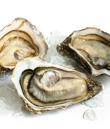 Frische Austern Gillardeau SP2